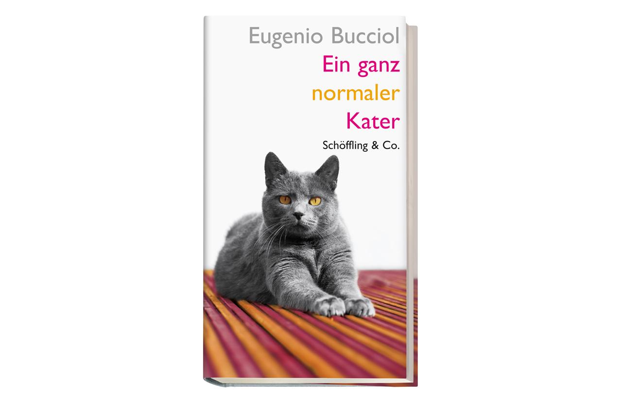 Eugenio Bucciol, Ein ganz normaler Kater