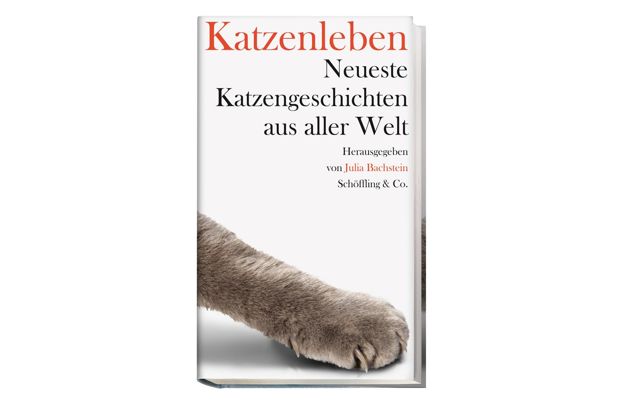 Julia Bachstein Katzenleben Katzengeschichten